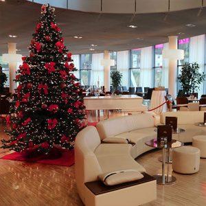 Weihnachtsbaum viba nougat welt - Weihnachtsbaum englisch ...
