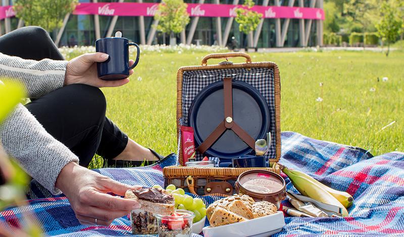 Picknick im Viba Park<span class=